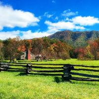 Как получить землю бесплатно от государства