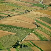 Что такое категории земли и какие они бывают