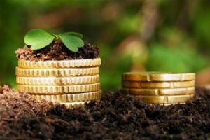 Денежные выплаты для работников сельского хозяйства