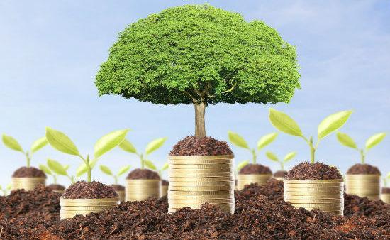 Как оценить кадастровую стоимость земельного участка