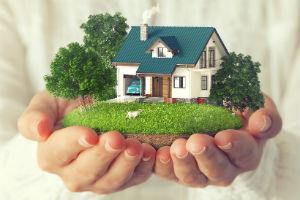 Кто может арендовать участок без торгов